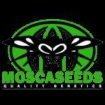 Mosca Seeds - Cannabis Seed Breeder, Cannabis Genetics