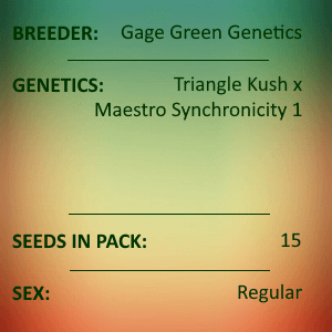 Gage Green Genetics - Pyramid 15 Seed Pack