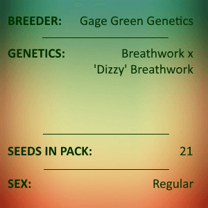 Gage Green Genetics - Impromptu No. 1 21 Seeds