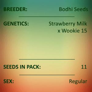 Bodhi Seeds - Terpenado