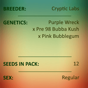 Cryptic Labs - Bubbagum