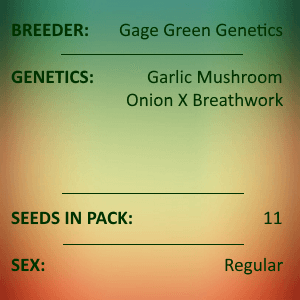 Gage Green Genetics - Birds of Fire 11 Seed Pack