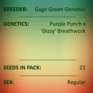 Gage Green Genetics - Prophesy 21 Seeds