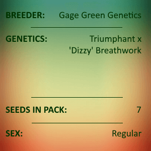 Gage Green Genetics - Tyger 7 Seeds