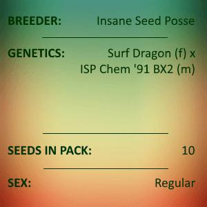 Insane Seed Posse - 91 Dragons