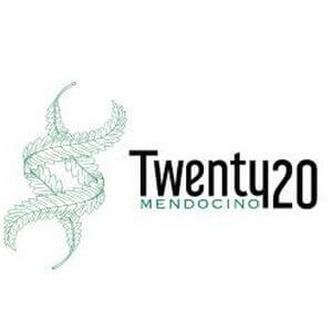 Twenty20 Genetics - Cannabis Seed Breeder, Cannabis Geneticsreeder