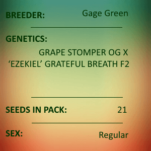 Gage Green-Archetype 21 seed pack