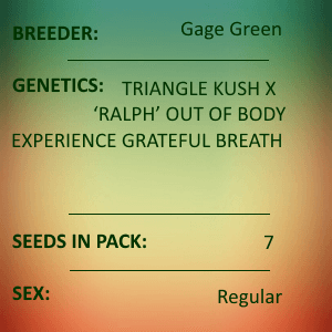 Gage Green-Focus 7 seed pack
