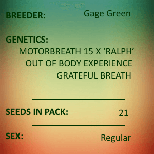 Gage Green-Fortis 21 seed pack