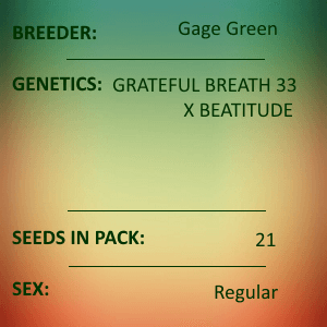 Gage Green-Rhapsody in Green 21 seed pack