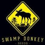 Swamp Donkey Seeds - Cannabis Seed Breeder