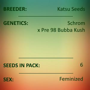 Katsu Seeds - Schromba