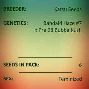 Katsu Seeds - Xanadu
