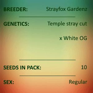 Strayfox Gardenz - Sliver White Temple