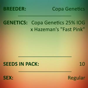 Copa Genetics - Project 25