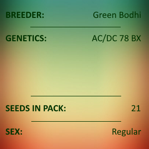 Green Bodhi - AC/DC 78 BX