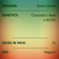 Green Bodhi - Charlotte's Web x AC/DC