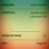 Green Bodhi - Kosher Kush x Ancient OG