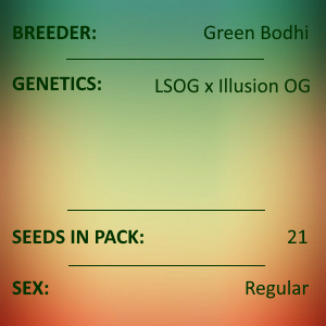 Green Bodhi - LSOG x Illusion OG