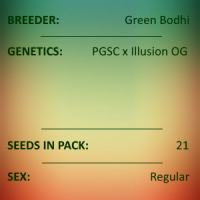 Green Bodhi - PGSC x Illusion OG