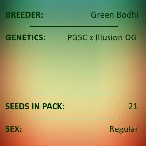 Green Bodhi - PGSC x Illusion OG