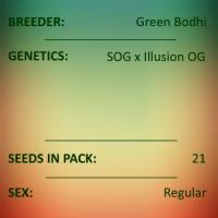 Green Bodhi - SOG x Illusion OG
