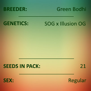 Green Bodhi - SOG x Illusion OG