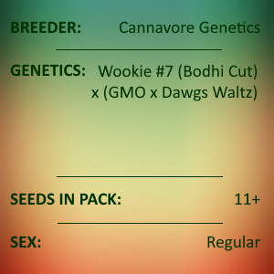 Cannavore Selections - Chembucha