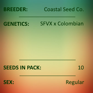 Coastal Seed Co - SFV Colombian