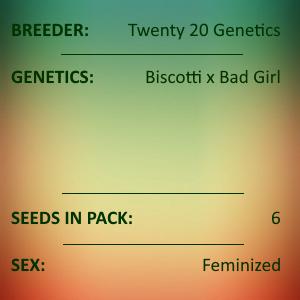 Twenty20 Genetics - Girl Crush