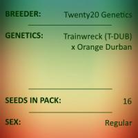 Twenty20 Genetics - Whistling Moon Traveler