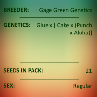 Gage Green Genetics - Prana 21 pack