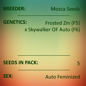 Mosca Seeds - Frosted Skywalker
