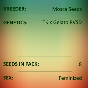 Mosca Seeds - Waves