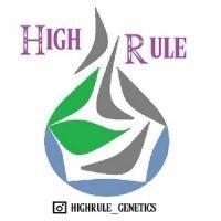 High Rule Genetics - Cannabis Seed Breeder, Cannabis Genetics