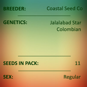 Coastal Seed Co - Jalalabad Colombian