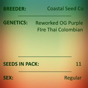 Coastal Seed Co - Jedi Mind Trip Colombian