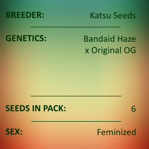 Katsu Seeds - Pleasure Dome