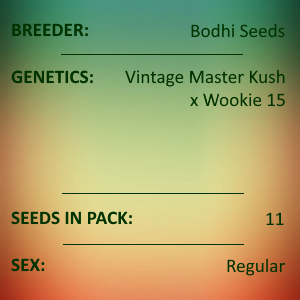 Bodhi Seeds - Master of Muppets