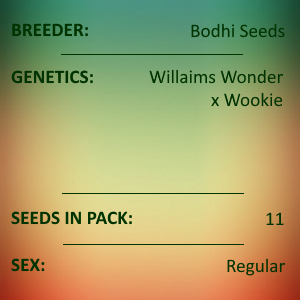 Bodhi Seeds - Wonder Wookie