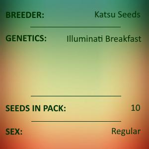 Katsu Seeds - Illuminati Breakfast