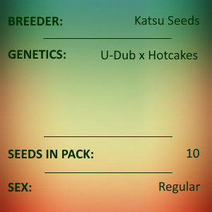 Katsu Seeds - Sleeping Rhino