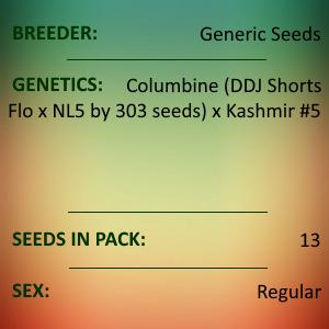 Generic Seeds - Columbine #9 x Azad Kashmir2