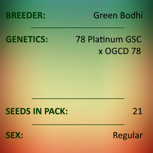 Green Bodhi - 78 Platinum GSC x OGCD78