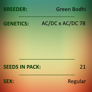 Green Bodhi - ACDC x ACDC 78