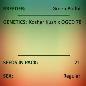 Green Bodhi - Kosher Kush x OGCD78
