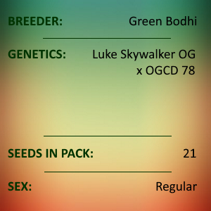 Green Bodhi - Luke Skywalker OG x OGCD78