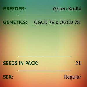 Green Bodhi - OGCD78 BX