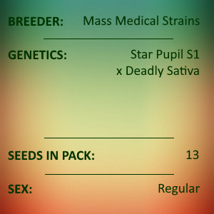 Mass Medical Strains - Deadly Pupil