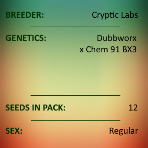 Cryptic Labs - Dubbworx x Chem 91 BX3
